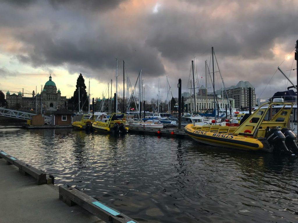 Victoria 2020